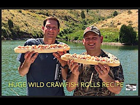 Catch And Cook Wild Crawfish Rolls, Recipe Lobster Mudbug Crab Crayfish