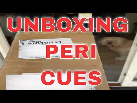 Unboxing of Peri cues and case