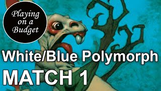MTG Modern: W/U Polymorph vs Angel Pod - Playing on a Budget