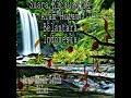 Suara Terapi Untuk Kicauan Setres Dengan Suara Hutan Indonesia  Mp3 - Mp4 Download