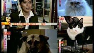 2001年12月 #張信哲# #我好想# 張信哲的動物園 貓狗兔子 亞洲娛樂中心