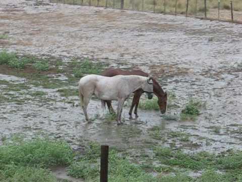 Farm Flood Mancos 3
