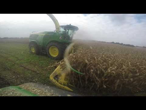 Dales Agri Maize Campaign 2016