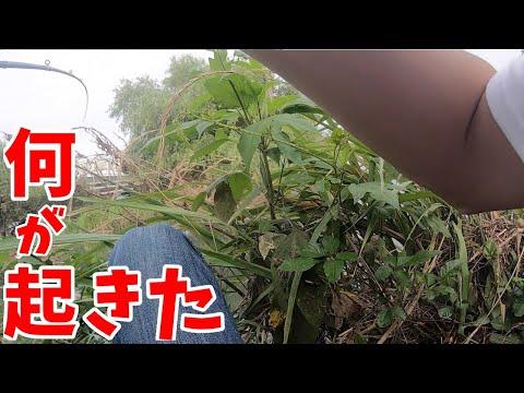 【リベンジ遠賀川】初バス釣れた!?【バス釣り】