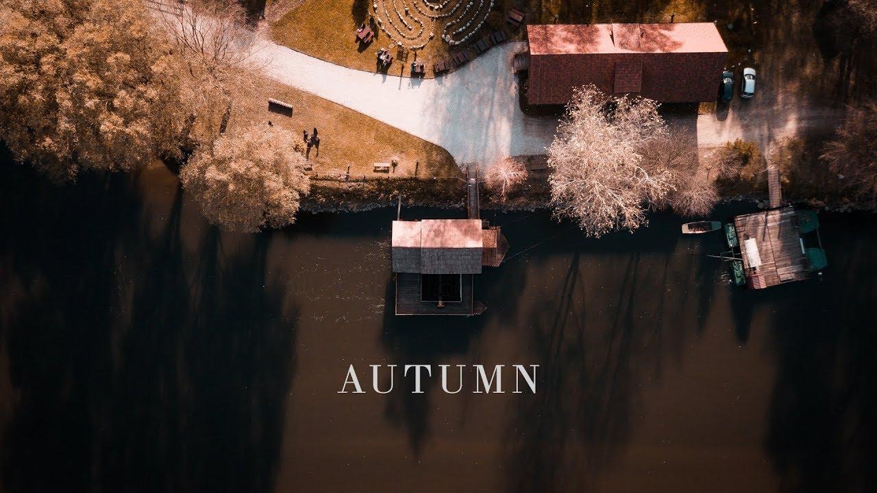 Autumn Colors   FREE LUT and PRESET   DJI Mavic Pro