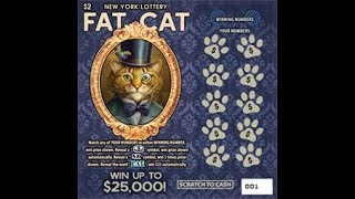 $2 - FAT CAT -  WIN!! Lottery Scratch Off instant win tickets - Scratcher NYS Bengal Cat  WIN!!