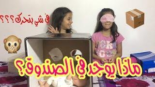 ماذا يوجد في الصندوق؟📦 شي بتحرك؟!   What's In The Box 📦