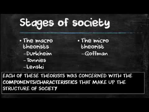 Society and Social Interaction