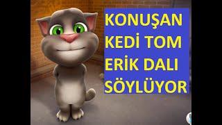 Sarki soyleyen kedi tom