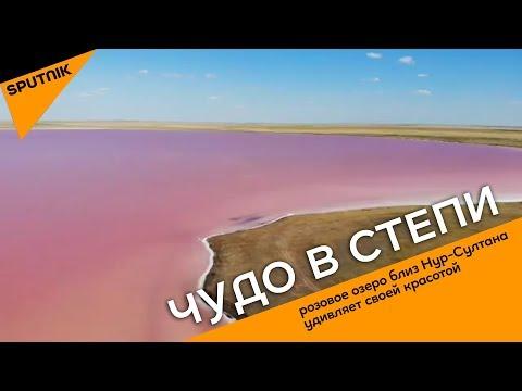 Чудо в степи: розовое озеро близ Нур-Султана удивляет своей красотой