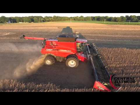 Mid-September Harvest 2015 in Central Illinois
