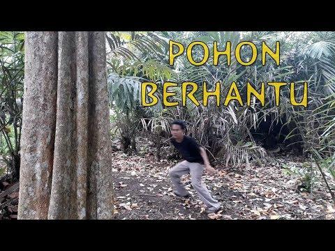 Film Horor Pendek - Pohon Sundel Bolong