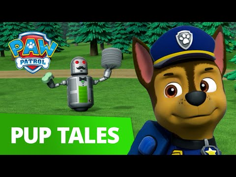 PAW Patrol | Pups Save a Waiter Bot | Rescue Episode | PAW Patrol Official & Friends!