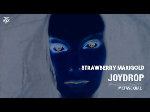 Joydrop  Strawberry Marigold