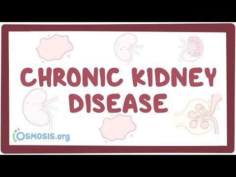 Chronic kidney disease - causes, symptoms, diagnosis, treatment, pathology