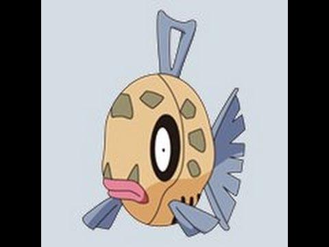 pokemon emerald how to catch feebas