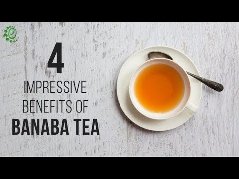4 Impressive Benefits of Banaba Tea & How To Make it | Organic Facts