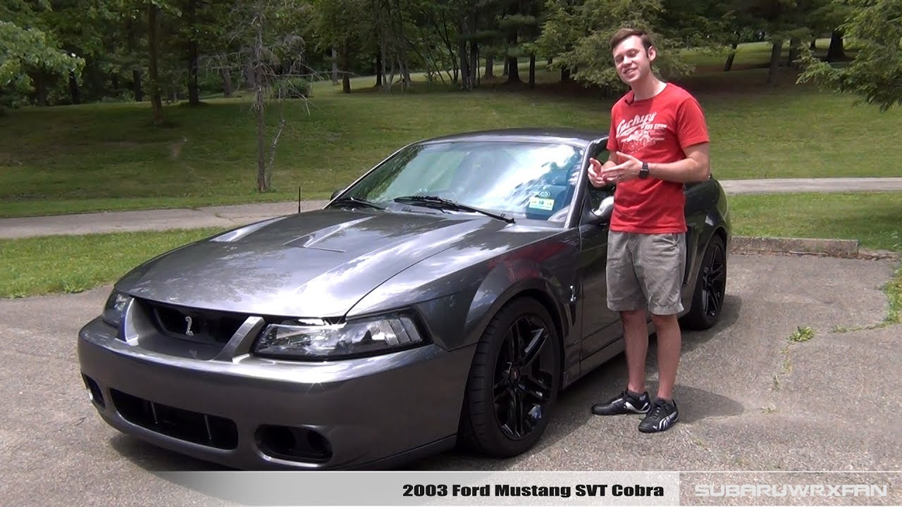 Review 2003 mustang svt cobra