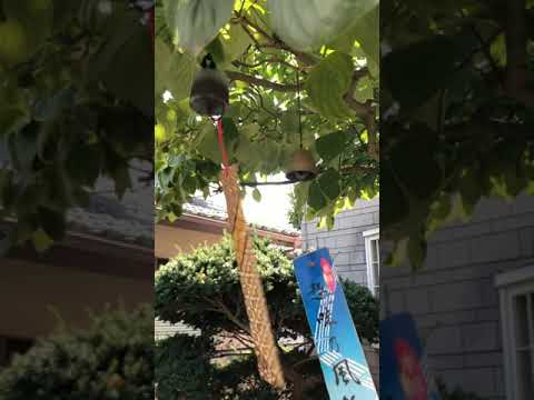 Japanese Wind Bells