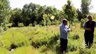 Karaca ( Möğrüm) Köyü Gölova-2.video