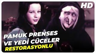 Pamuk Prenses ve Yedi Cüceler - Türk Filmi Tek Parça (HD)