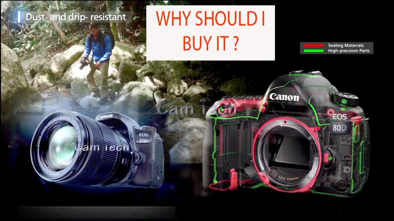 Canon 77D vs Canon eos 80D! Should you buy the 80D or 77D?Canon 77d vs 80d  Detail Compare in hindi