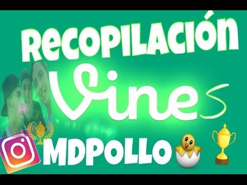 RECOPILACIÓN  VINES | MDPOLLO