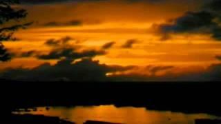 Ronnie Aldrich - All By Myself