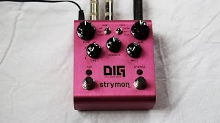 Strymon DIG Dual Digital Delay - in Depth Demo
