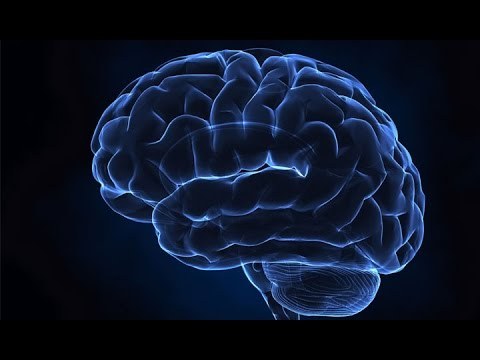 Top Documentary  Unlimited Power Of Human Brain