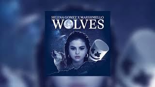 Selena Gomez - Wolves (Studio Acapella)