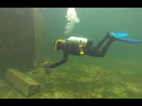 Brighton Marina New Years Day Scuba Dive
