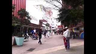 Shopping in Havana on San Rafael Street streaming