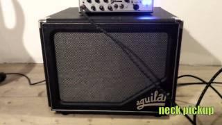 Elrick Bass Hybrid 5 string + Aguilar Tone Hammer 500 + SL 112 cab