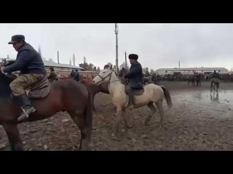 Өзгөн мал базар / Шустрый аттар сатылды 04.02.19
