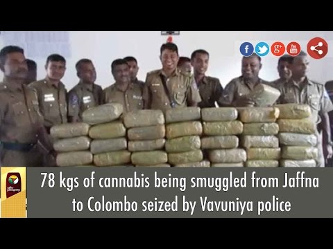 78 kgs of cannabis being smuggled from Jaffna to Colombo seized by Vavuniya police
