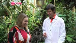 Доктор Кондрашов и Екатерина Овосени на НТВ