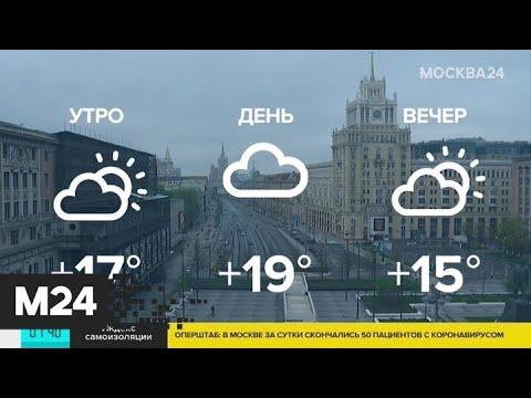 Какая погода ожидает москвичей в ближайшее время - Москва 24