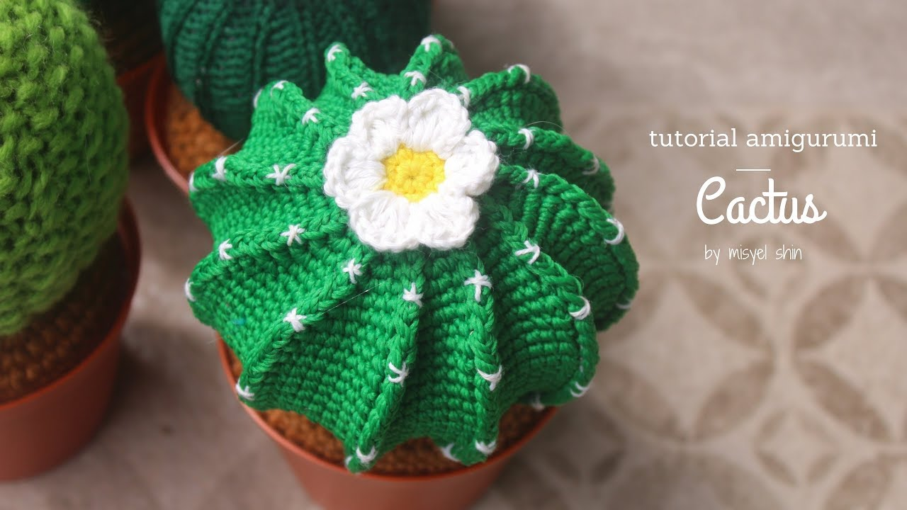 11 Crocheted Cactus Patterns | The Crochet Crowd | 720x1280