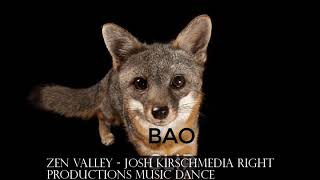 Zen Valley - JOSH KIRSCHMEDIA RIGHT PRODUCTIONS#music dance#electronic EDM
