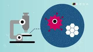 바이러스와의 전쟁...세균과 바이러스의 차이점은? [T…