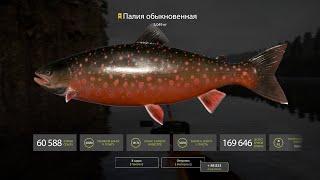Русская рыбалка 4Поймал щуку троф на 10кгОбкатываю ПодарокРР4