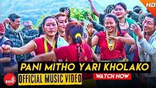 New Lok Dohori Song 2016 || Pani Mitho Yari Kholako - Priyajan Rai & Menuka Rai | Purbeli Joontara