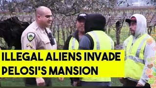 Nancy Pelosi's Wall Jumped by Alleged Illegal Aliens Led by Right Wing Activist