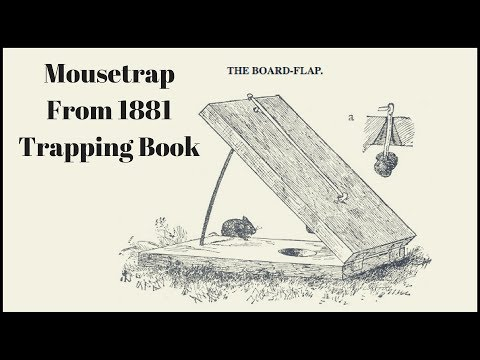 Mousetrap From a 1881 Trapping Book. The BOARD-FLAP Trap - Mousetrap Monday