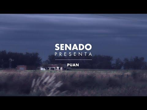 Capitulo 028: Puan