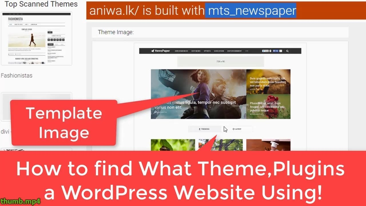 How To Find What Themes And Plugins A Wordpress Website
