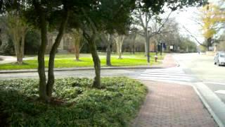 College of William and Mary Campus