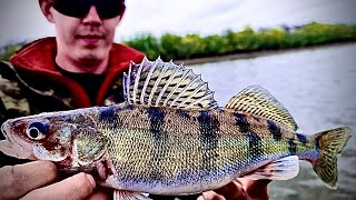 Рыбалка в Астрахани весной!Берш!Судак!Щука!Злые поклёвки!Новые рыбы!Советую посмотреть!