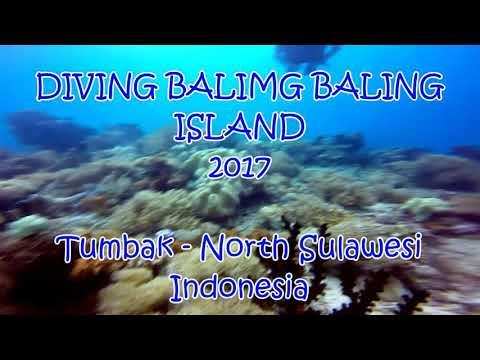 Diving Baling Baling Island 2017 - North Sulawesi, Indonesia